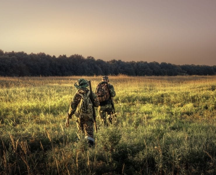 Two hunters walk out into a field towards the forest.